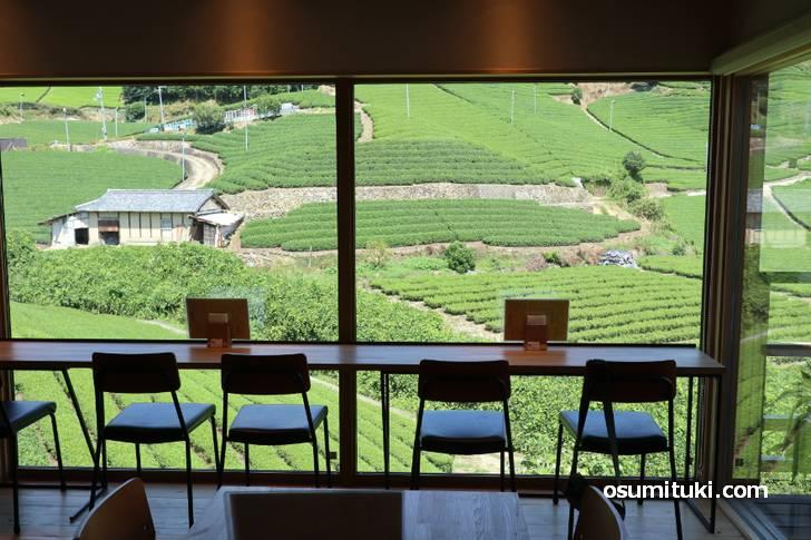店内からは「石寺の茶畑」を存分に眺めることができます