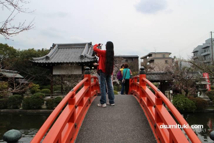 もしくは神泉苑の朱塗りの橋ですが、見た目が少し違います