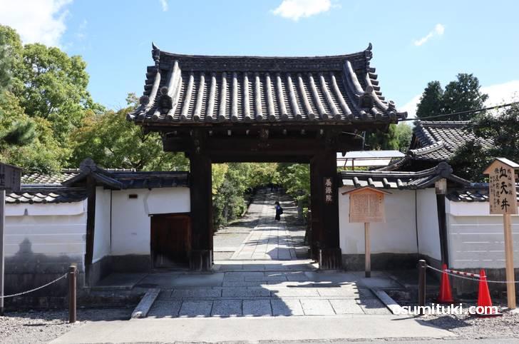 天井だけがアレに染まる京都の寺「養源院」
