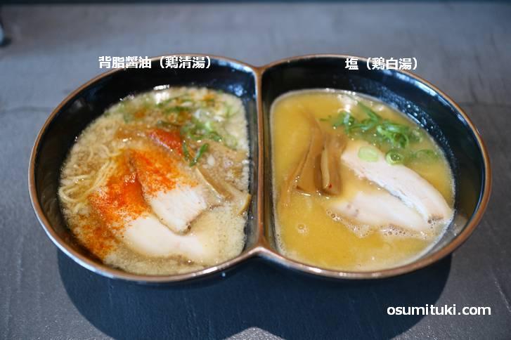 左が「背脂醤油(鶏清湯)」で右が「塩(鶏白湯)」です