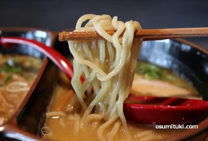 麺は京都では多く見かけるストレート中太麺