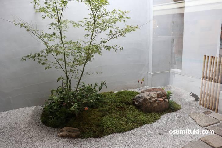 京都のお店らしく坪庭もあります(ボンチキョウト 銀閣寺店)