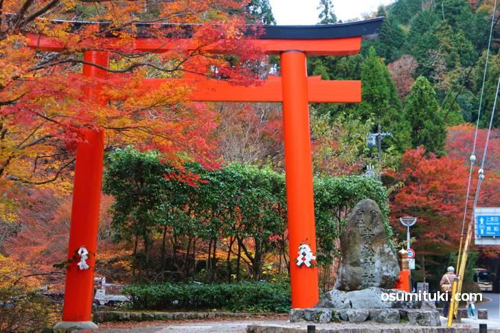 秋の京都を村上佳菜子さん&浜口京子さんコンビが『バナナマンのせっかくグルメ』で紹介