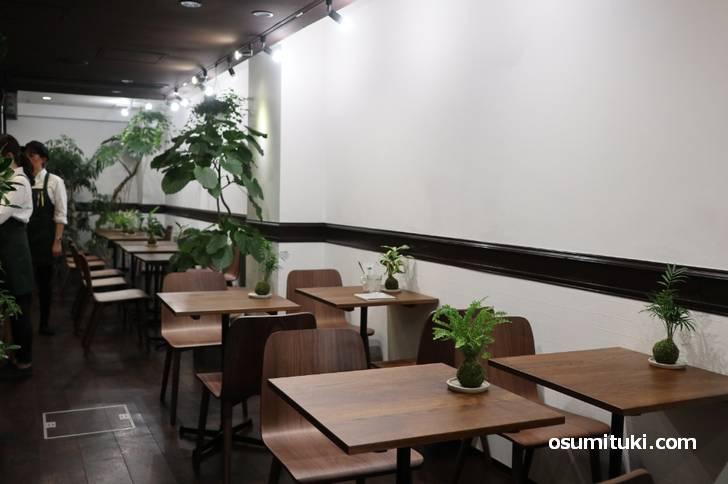 店内には観葉植物がたくさんあって良い香りがします