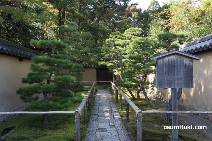 京都・大徳寺にある「高桐院」竹の名所です