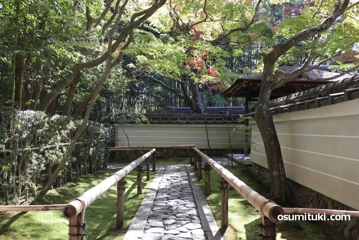 お庭や茶室を見ることができます