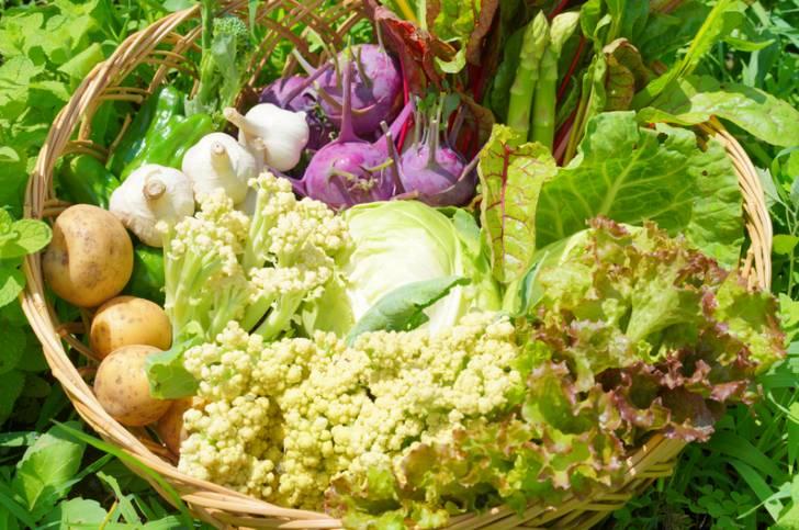 ヴィーガンラーメンとは野菜や海藻(昆布)を出汁に使ったラーメンです