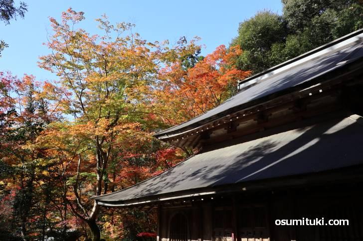 地元の廃寺「讃州寺」へ