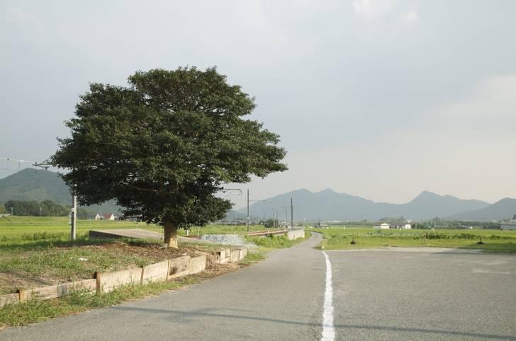 自然豊かな加古川市にあるピザ屋さんが2020年初放送の『人生の楽園』で紹介