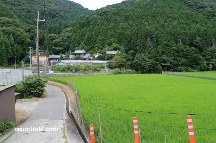 山空海温泉 駐車場への道は農村集落へ入る細い道です