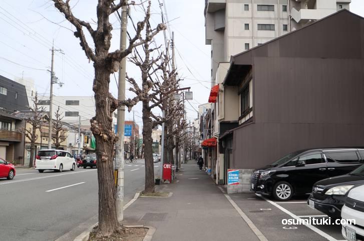 千本丸太町西入ル、徒歩1分くらいの南側にあります(CAFEかめだ)