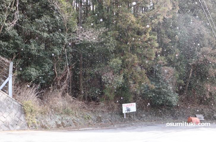 金閣寺から原谷方面へ向かう氷室道(2020年2月6日10時撮影)