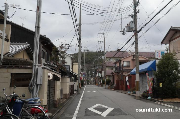 京都の衣笠山も夜に光ることがあります
