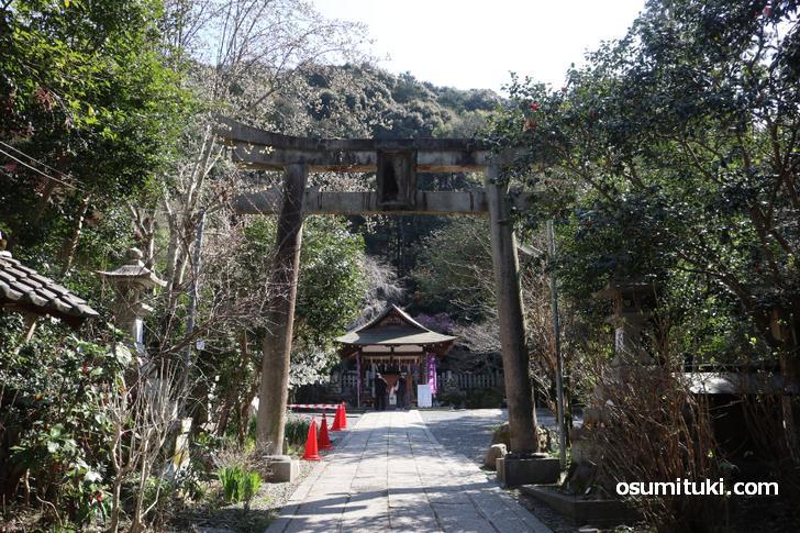 銀閣寺から哲学の道を歩いて行くのが観光コース