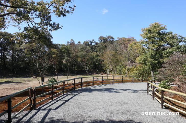 金閣寺の新しい参拝路