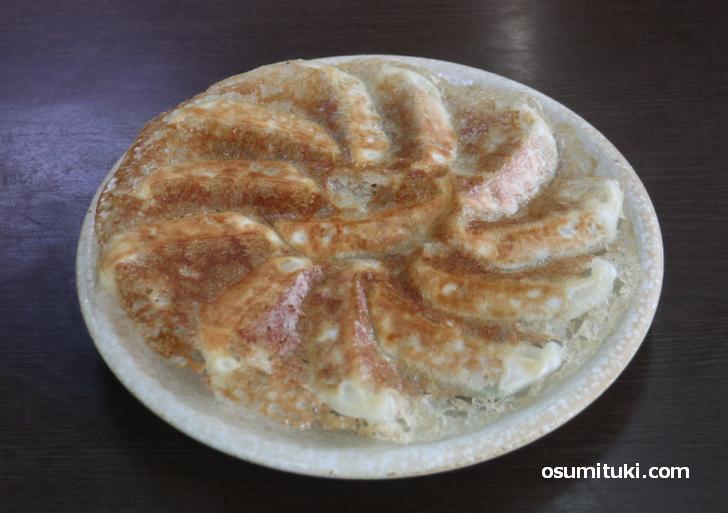 メニューにはないけど「円盤餃子(12個)」