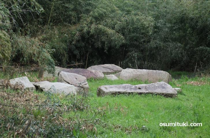 これが京都にある残念な石「残念石」