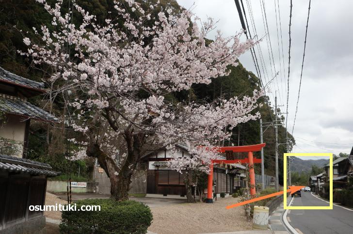 勝手神社の少し先、右側に「残念石」があります