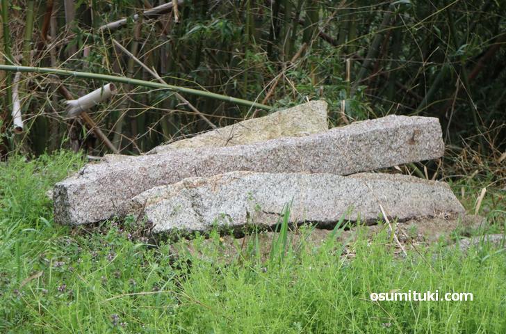 看板の脇の小さな残念石