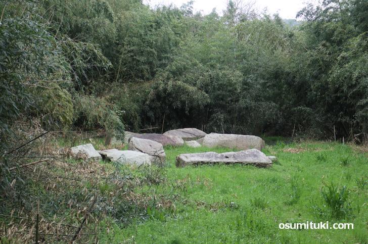 残念石の巨石群