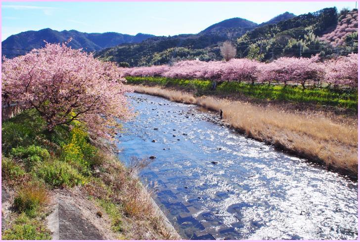 河津桜の里の農家レストラン&カフェ 里山さんが『人生の楽園』で紹介