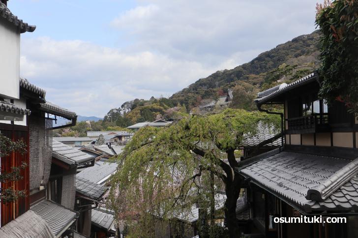 新型コロナウイルスで観光客が一番いなくなったのは祇園と清水寺エリア
