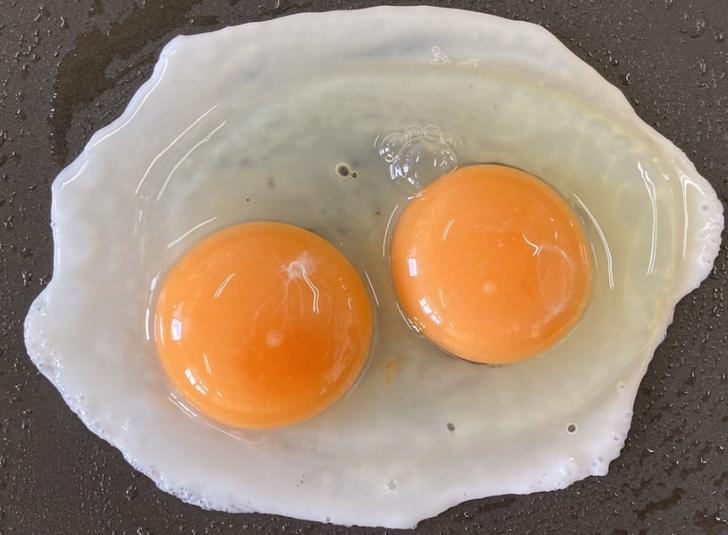 黄身2つの卵だけ出てくる自販機(愛知県蒲郡市)が『ナニコレ珍百景』で紹介