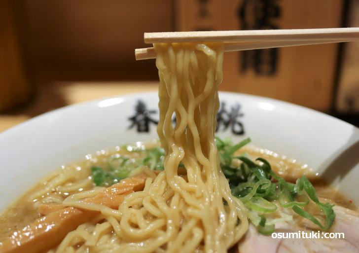 麺は中金製麺の縮れ麺で美味い