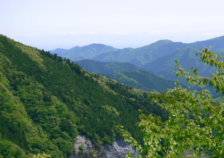 檜原村は山の村、斜面を利用した茶畑がかつてありました(写真は檜原村)