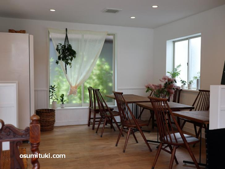 白を基調にシックな木製家具、緑が多く飾られた店内です(月猫商會)