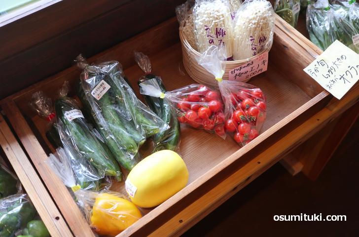キュウリやミニトマトなどを販売していました