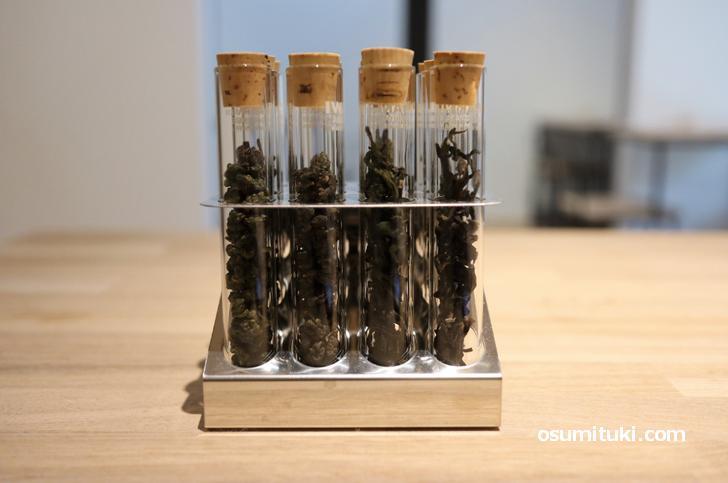 台湾茶はすべての茶葉を嗅いで選ぶことができますよ!