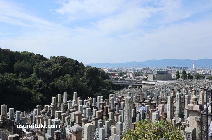 来た道の反対側を見ると京都タワーが見えました