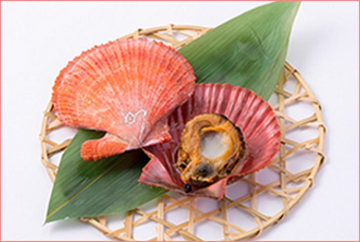 三陸の新名物「赤皿貝」が『満天☆青空レストラン』で紹介