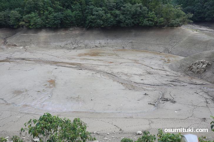 水量が調節されて水が抜かれたので池の底が見える状態になっています