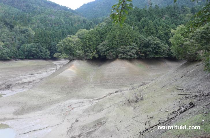 稲作が終わった晩秋に「ため池」の水は抜かれます