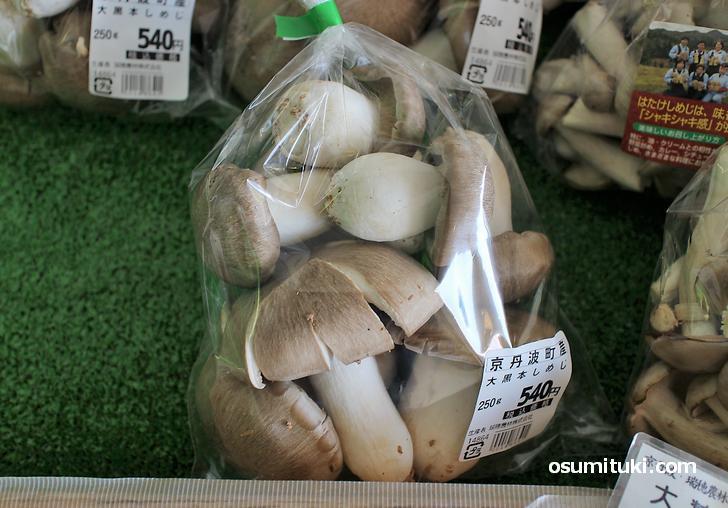 京丹波産「大黒本しめじ」は250gで540円程度で販売されています