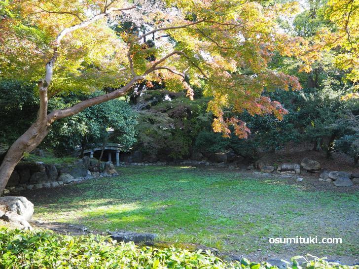 近衛邸跡に残る近衛池