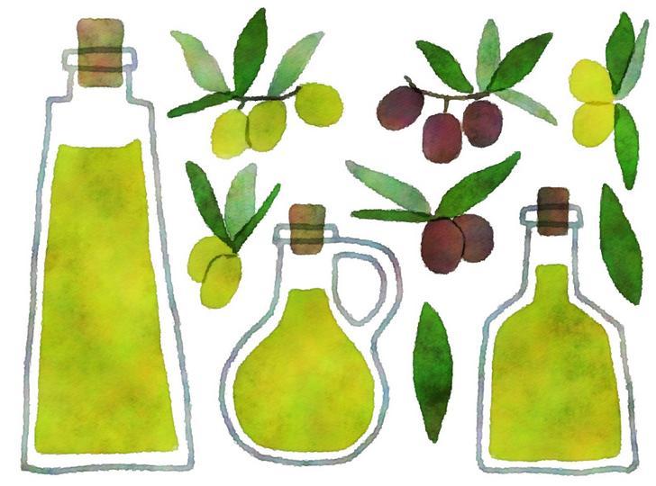オリーブの栽培からオリーブオイルの生産まですべて静岡県で作業