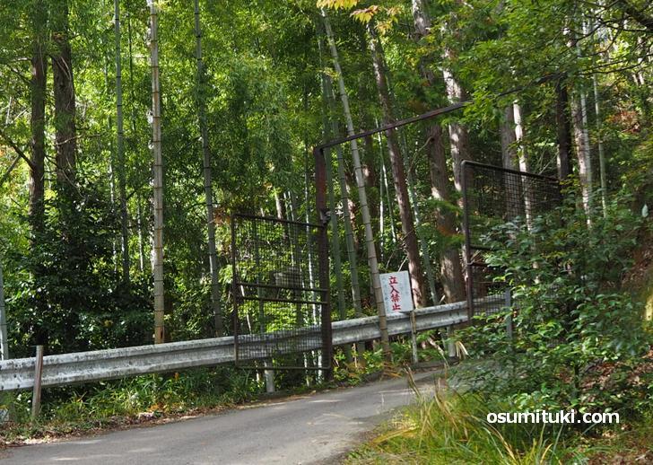 謎の「FUKUMURA」さん宅へ続く道