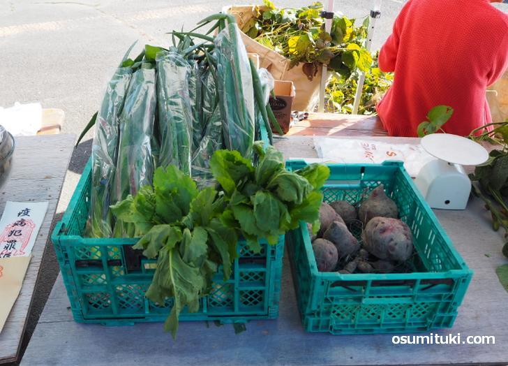 野菜の露店、ネギと米を4kgを買いました!
