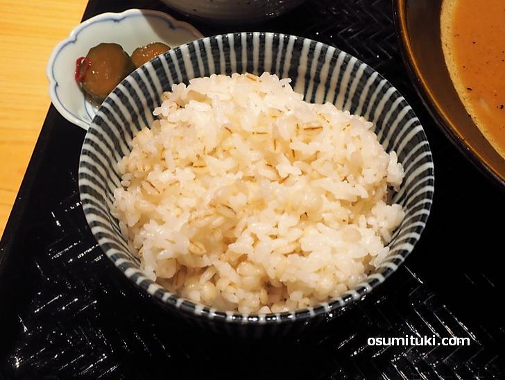 麦飯とろろセット(漬物付き)