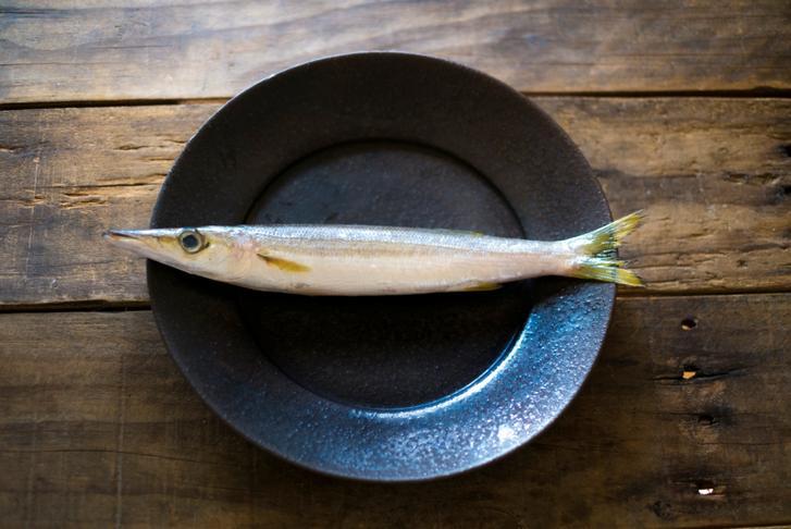 霜降りアカカマス(江の島)が『満天☆青空レストラン』で紹介