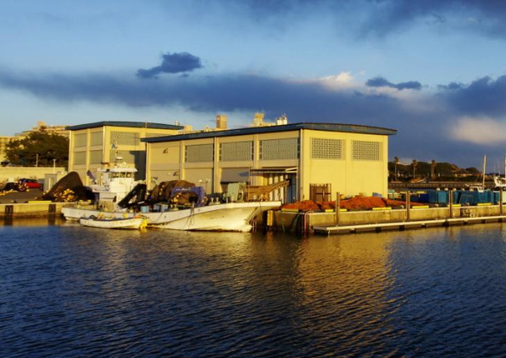 片瀬漁港鮮魚直売所の鮮魚販売は中止となっている