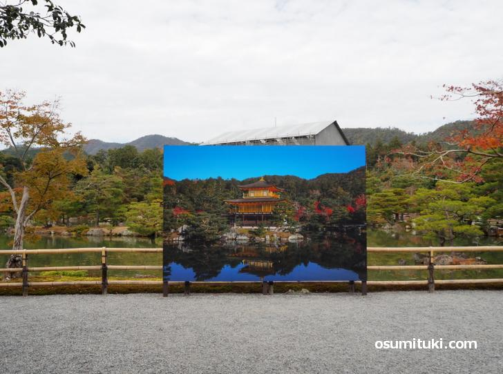 2020年11月29日の金閣寺(工事中)