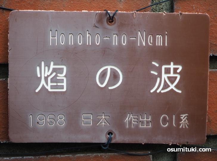 焔の波(京都府立植物園)