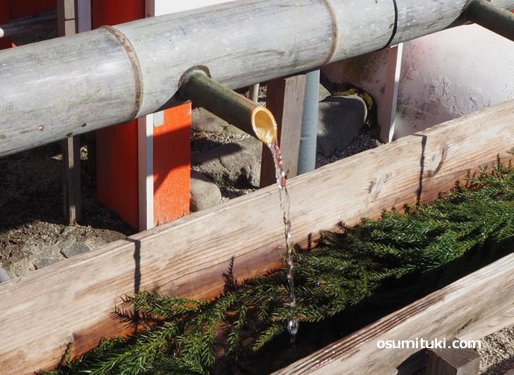 上賀茂神社「手水」がコロナ対策で竹筒から水が流れるように改良