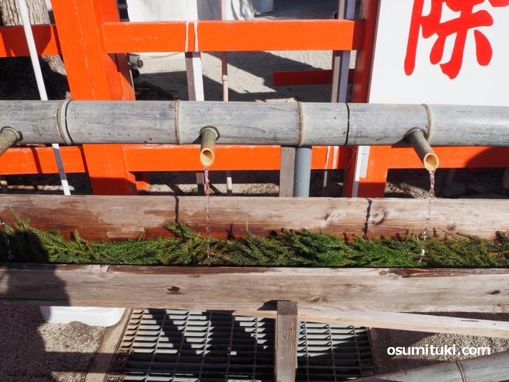 上賀茂神社「手水」これはこれで良いと思う