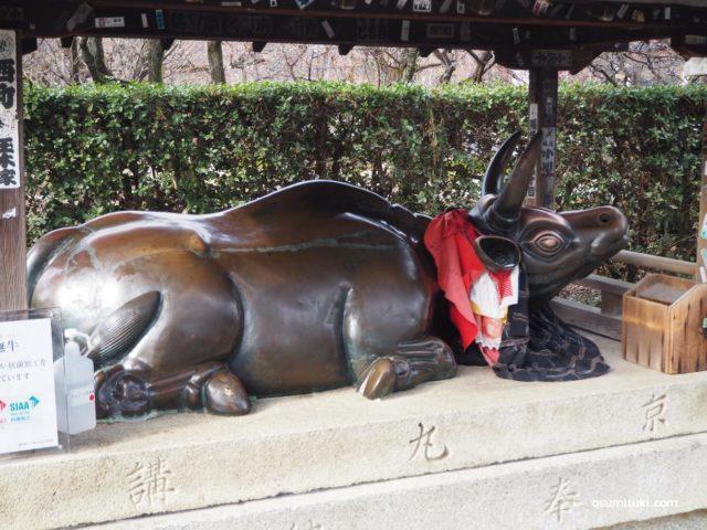 北野天満宮の境内には「牛」がたくさん置かれている