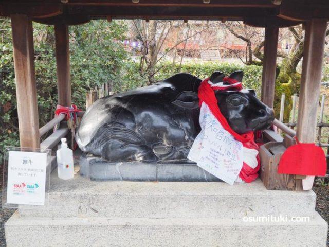 本殿前の黒い撫で牛(北野天満宮)